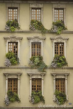Windows of a French Town House in Annecy, in neat formation, with beautiful flower boxes