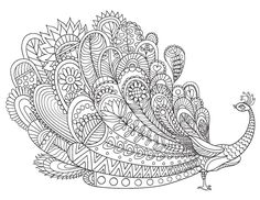 Free printable peacock adult coloring page. Download it in PDF format at http://coloringgarden.com/download/peacock-coloring-page/
