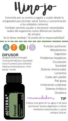 HINOJO Aceite esencial de dōTERRA de hinojo dulce Propiedades y usos My Doterra, Doterra Blends, Doterra Essential Oils, Melaleuca, Esential Oils, Essential Oil Diffuser Blends, Homemade Face Masks, Lose Weight Naturally, Natural Oils