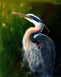 Painted Wading Birds - Voting Ends / Prizes Awarded:Monday, November 2014 - PM E. Wolf Artwork, Canvas Art, Canvas Prints, Nautical Art, Acrylic Art, Acrylic Paintings, Blue Heron, Fish Art, Love Painting