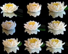 This crochet flower is stunning! Water Lily (Seamless) - Media - Crochet Me