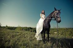 horse-wedding