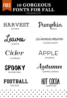 Favorite free fonts for fall designing! For printables, party signs, invitations, banners, design work, etc. Links to download each in the post!