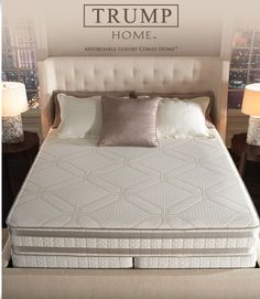 Trump Home Iseries By Serta Wholesalemattress Serta Mattress