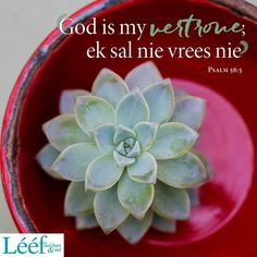 Psalm 56, Afrikaans Quotes, Note To Self, True Words, Bible Verses, Scriptures, Journal Inspiration, Inspirational Quotes, Van