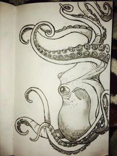 My octopus drawing by colette