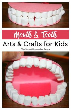 In this post, we will show you how we made some really fun mouth & tooth arts & crafts for kids to learn the names and locations of teeth! The best part? The teeth are made out of mini marshmallows! Toddler Crafts, Preschool Crafts, Toddler Activities, Preschool Curriculum, Preschool Letters, Daycare Crafts, Toddler Art, Homeschooling, Kindergarten