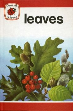 Vintage Ladybird Leaders Book-Leaves by Popeth on Etsy Spot Books, Ladybird Books, Vintage Children's Books, Black Spot, Learn To Read, Bedtime, My Childhood, Childrens Books, Fairy Tales