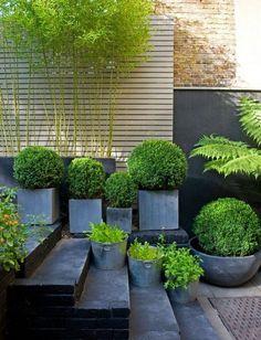 Patio Garden   www.coolgarden.me