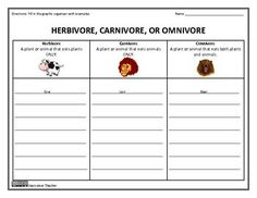 This graphic organizer will allow your students to strengthen their knowledge of herbivores, carnivores and omnivores. Included are 4 versions to aid in differentiation.