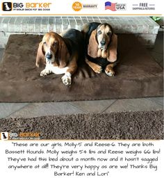 "Customer photo. To get this bed, https://bigbarker.com/  ""These are our girls, Molly-5 and Reese-6. They are both Bassett Hounds. Molly weighs 54 lbs and Reese weighs 66 lbs! They've had this bed about a month now and it hasn't sagged anywhere at all!!! They're very happy as are we! Thanks Big Barker! Ken and Lori""   #bassetthounds #americanmadedogbeds #dogbedlargebreed #dogbedlivingroom #dogbedluxury"