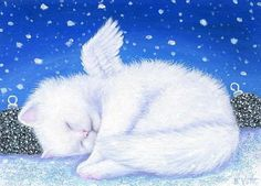 Star-filled Sky Gallery - Little Christmas Angel