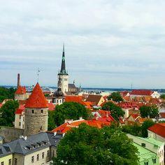 With huge passion to life: Tallustellen Tallinnassa