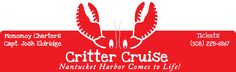 Critter Cruise - Nantucket Harbor Comes to Life