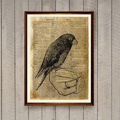 Parrot poster Bird print Rustic decor Animal art WA840