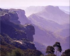 John Wilson Australian landscape oil Paintings. Blue Mountains Artist.