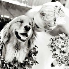 Get a Free Consultation for your #dog from our Friends at Nature's Select http://naturalpetfooddelivery.com/nsd/usa/free-consultation/ #weddings