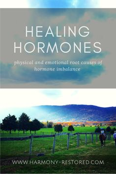 The physical and emotional root causes of hormone imbalance - and how to heal it
