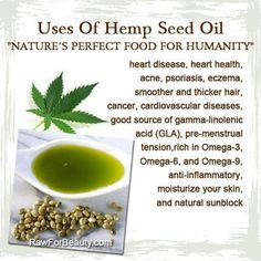 The Uses Of Hemp Seed Oil - Natures Perfect Food For Humanity! Natural Cures, Natural Healing, Natural Beauty, Holistic Healing, Natural News, Healing Oils, Holistic Wellness, Aromatherapy Oils, Holistic Nutrition