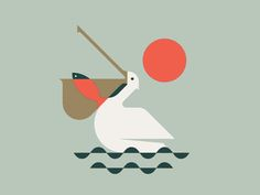 Pelican by Pavlov Visuals - Dribbble