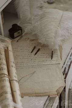 Feather quill pens and ink_ Vintage Accessoires, Decoration Shabby, Old Letters, Handwritten Letters, Lost Art, Penmanship, Letter Writing, Writing Desk, Mail Art
