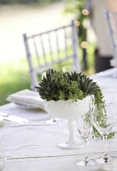 succulent in milk glass centerpieces