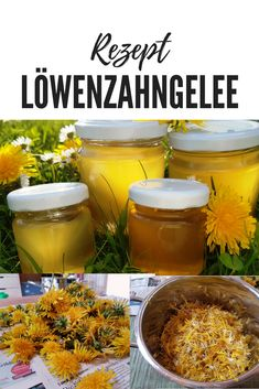 Dandelion jelly made easy! Bring the # spring on the plate . Fusion Food, Dandelion Jelly, Desserts With Biscuits, Taraxacum Officinale, Tasty, Yummy Food, Kitchen Gifts, Preserving Food, Diy Food