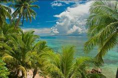 View, Taveuni Palms, Fiji