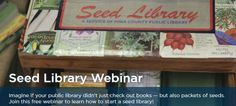 How to Start a Seed Library