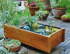 "Need one for my screened porch! :)    DIY mini water garden in a box.  ""On the inside of the box, install a plastic liner or use a water sealant. If you plan to house fish, choose a sealant that's safe for aquatic life--read the label carefully or check with an experienced pond fancier.""(useful info)"