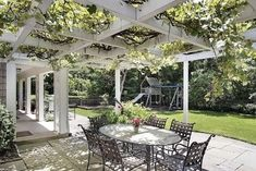 I would love to extend the grape arbor over the patio - shade in just a year!