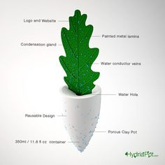 Hydria Pot is a root irrigation system that collects water dew droplets into a clay pot container.