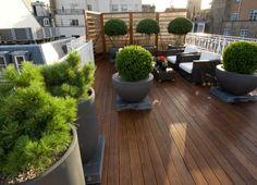 Philip Nixon Outdoor Garden Rooms, Rooftop Terrace, Rooftop Gardens, Living Roofs, Roof Deck, Roof Top, Roof Design, Topiary Garden, Garden Planning