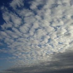 Morning clouds /running...