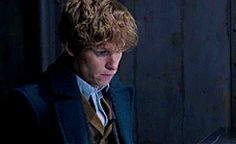 We all need some inspiration from Newt Scamander!