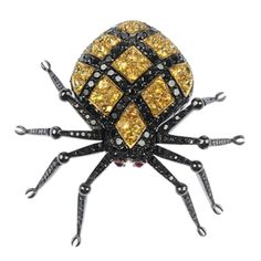 A sapphire, ruby and black-gem spider brooch