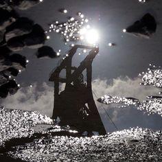.@Der Frosch 123 | #ruhrgebiet #ruhrpott #essen #zollverein #zechenfetisch #pfütze #spiegelung #...
