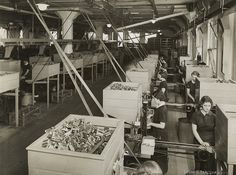 Women at work in match factory making boxes.    ca. 1920-ca. 1959