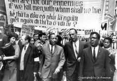 """Human salvation lies in the hands of the creatively maladjusted."""" Dr. Martin Luther King, Jr."""