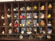 Lots of birds showed up to help celebrate Spring in the shop!