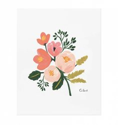 Rose Botanical Illustrated Art Print