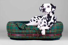 Grafton Street Dog Bed ~ Classic Charm | Narciss & Echo