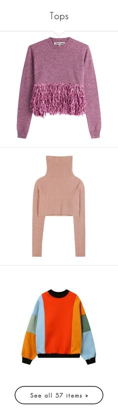 """""""Tops"""" by andreamcloughlin ❤ liked on Polyvore featuring tops, sweaters, shirts, purple, loose long sleeve shirt, long sleeve shirts, wool shirt, purple shirt, wool long sleeve shirt and valentino"""