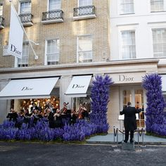 Continuing the festivities of our newly opened New Bond Street boutique, the house of Dior has taken over the famous lane with an orchestra lost in a delphinium flowerbed to welcome boutique visitors. Boutique Interior, Boutique Dior, Retail Facade, Shop Facade, Delphinium, Cafe Design, Store Design, Dior Shop, Large Flower Arrangements