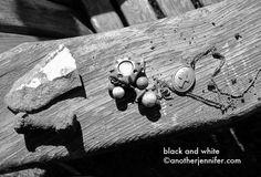 Wordless Wednesday: Black and White