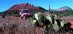 No better way to see the beauty of Sedona than a Pink Jeep Tour! To do before I leave next year!