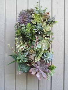 15+ Wonderful Vertical Succulent Garden Ideas