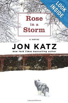 """""""Rose in a Storm"""" : a novel by Jon Katz. Books To Read, My Books, Great Stories, Losing Her, The Conjuring, Bestselling Author, I Movie, Over The Years, Novels"""