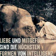 ...Liebe und Mitgefühl...❤❤❗