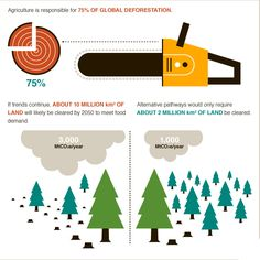 Food vs forests? Agriculture causes nearly 75% of global deforestation #BigFacts via @cgiarclimate